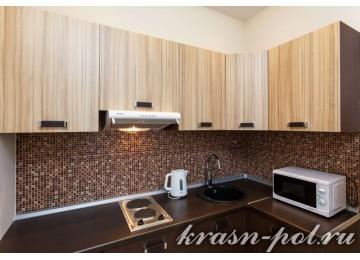 1-комнатный апартамент с кухней